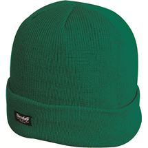 Thinsulate Ski Hat Green