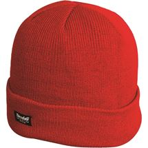 Thinsulate Ski Hat Red
